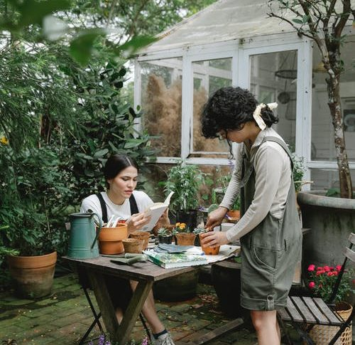 How to take good care of your residential or commercial garden spaces