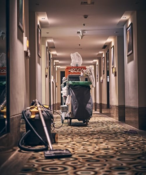 Ways in which a professional carpet clean to your office are important